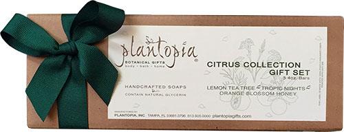 Citrus Collection 3 Bar Gift Box