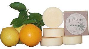 Sea Soap Original